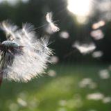 花粉女子の皆様へ!肌荒れを救うスキンケア&花粉対策コスメ&マスクメイク方法まとめ